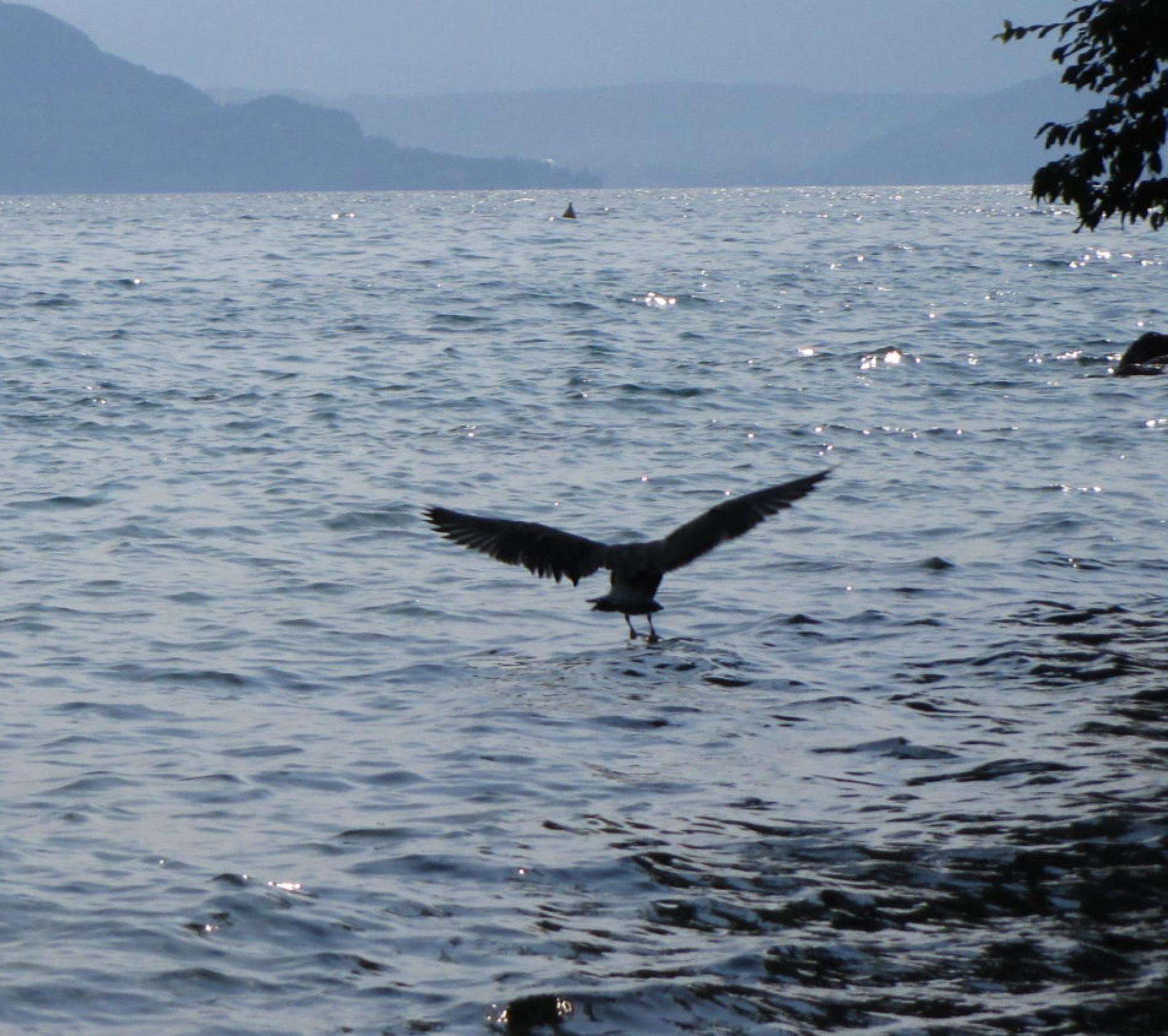 Leggende del lago di Garda | blog | Saga delle Streghe Quinti